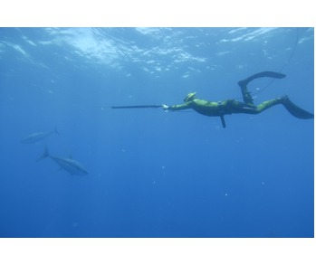 Spearfishing Course